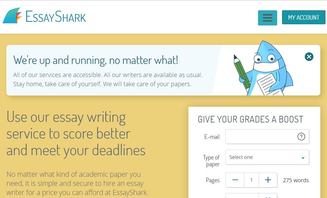 essayshark.com overview